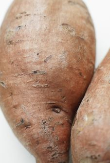 Free Organic Sweet Potato Stock Photo - 3298300