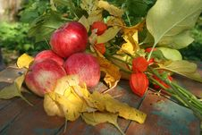 Autumnal Apples And Flowers Royalty Free Stock Photography