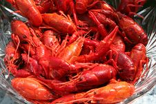 Free Crayfish Royalty Free Stock Photography - 32967117