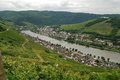 Free Zell Mosel & Vineyards Royalty Free Stock Images - 32972359