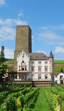 Free Vineyards And Castle Rudesheim Royalty Free Stock Photos - 32972268