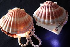 Seashells With Pearls And Money Stock Image