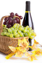 Free Bottle Of Wine With Grapes In Basket Stock Photography - 32996432