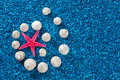 Free Starfish And Seashells On Blue Background Stock Photo - 32997210