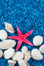 Free Starfish And Seashell On Blue Sand Like Water Royalty Free Stock Images - 32997559