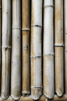 Free Brown Bamboo Stock Photography - 32993572