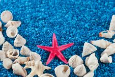 Free Star-fish And Seashells On Sand Stock Photos - 32997453