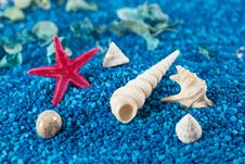 Starfish And Seashell On Blue Sand Royalty Free Stock Photos