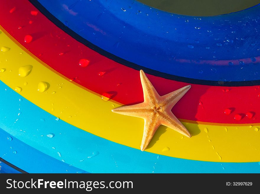 Starfish on a colorful background