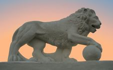 Sunset Lion-4 Stock Photo