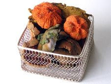 Free Autumn Potpourri In A Basket Royalty Free Stock Photos - 334058
