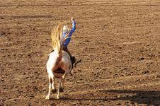 Free Saddle Bronc Royalty Free Stock Images - 335519