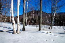 Free New England Winter Royalty Free Stock Image - 337306