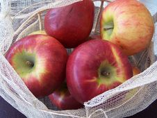 Free Fruit Royalty Free Stock Photo - 338625