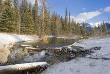 Free Mountain Creek In Winter Royalty Free Stock Image - 339406