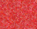 Free Stone Wall Pattern Red Stained Royalty Free Stock Image - 3306036