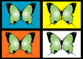Free Butterfly2 Stock Photography - 3309702