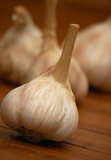 Free Garlic Royalty Free Stock Images - 3300049