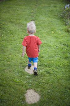 Free Little Boy Exploring Stock Photo - 3300690