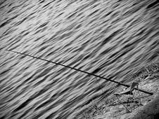 Free Fishing-rod Stock Photos - 3302563