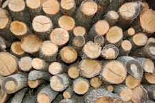 Free Wood Stock Photography - 3304042