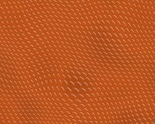 Reptile Skin Background Red Sn Stock Images