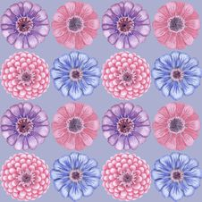 Free Hand-drawn Vintage Zinnia Pattern Royalty Free Stock Image - 33011966