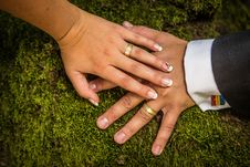 Free Newlyweds Hands With Rings Stock Photos - 33029373