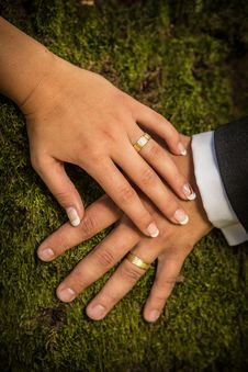Free Newlyweds Hands With Rings Royalty Free Stock Image - 33029466
