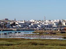 Free Bouregreg River Stock Photos - 33037983