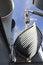 Free Cruiser Avrora Stock Images - 33030414