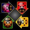Free LadyBug Arrow Buttons Stock Photo - 33043630