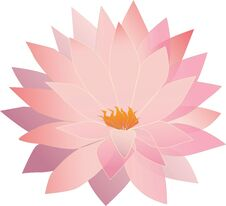 Free Translucent Lotus Flower Stock Photo - 33041830