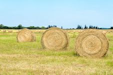 Free Hay Bales Royalty Free Stock Images - 33043719