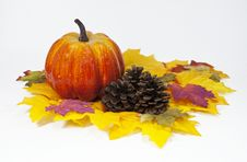 Free Pumpkin And Pine Cones Royalty Free Stock Images - 33052879