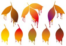 Free Autumn Leaves With Paint Drops, Vector Set Royalty Free Stock Image - 33056456