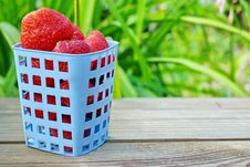 Free Strawberries. Summer Ripe And Juicy Berryes. Stock Photography - 33077672
