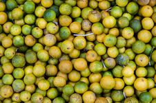 Free Limes Royalty Free Stock Images - 33081769