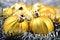 Free Christmas Balls And Garland Stock Photography - 33099422