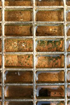 Free Cell Water Grate Stock Photos - 3311153