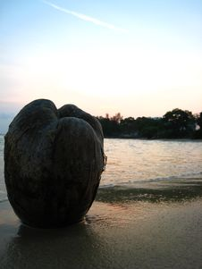 Free Coconut Sunset Stock Image - 3312841
