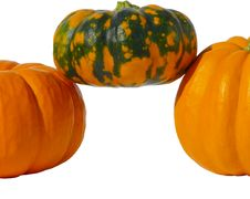 Pumpkins Isolated Royalty Free Stock Photography