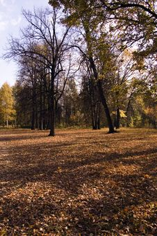 Free Moscow Autumn Stock Images - 3316064