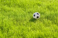 Free Toy Football On The Grass Royalty Free Stock Images - 3316499