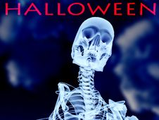 Halloween Xray Bone Stock Photos