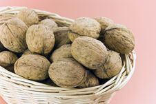 Free Young,fresh Walnuts On The Bas Stock Photography - 3318532