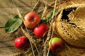 Free Composition With Apples, Stalks And Straw Hat. Stock Photo - 33106490