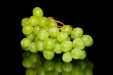Free Green Grapes Royalty Free Stock Photos - 33101988