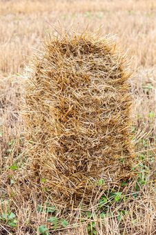 Free One Haystack In A Field Stock Images - 33103304