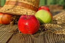 Free Composition With Apples, Stalks And Straw Hat. Stock Photography - 33106132